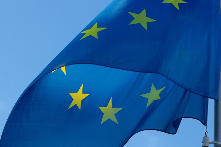 European Union - The postponement of the E-Commerce reform to 1 July 2021 ratified