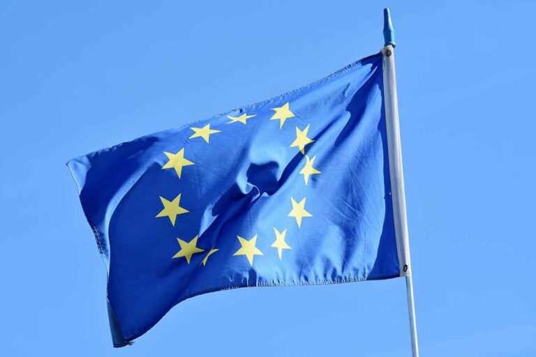 European union - Only the owner of the goods can recover import VAT